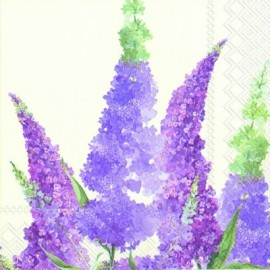 Buddleia cream