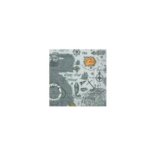 carte des oceans grey