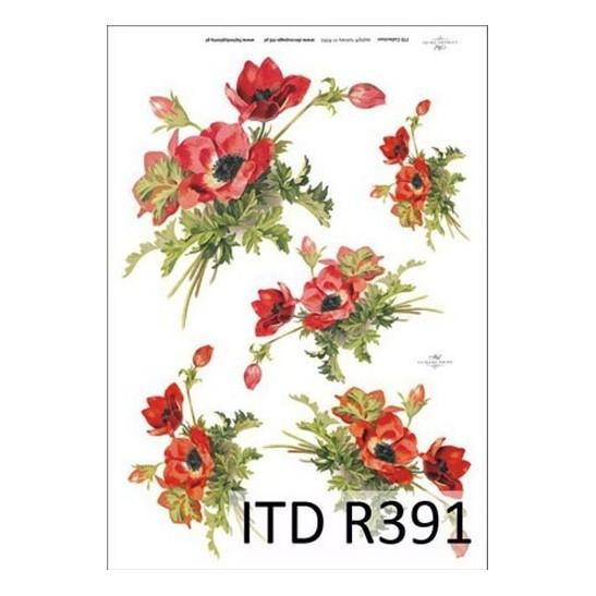 Ριζόχαρτο ITD Collection, 21x29cm R391