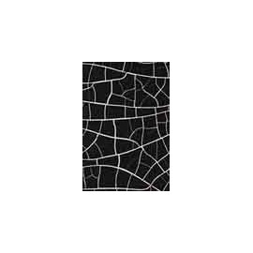 Crocodile crackle - Μαύρο